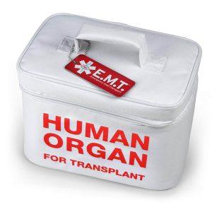 Human Organ Lunchbox